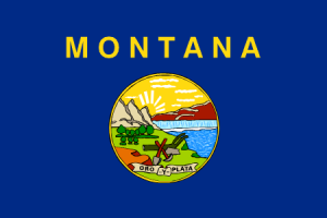 Montana sports betting statute mittagstisch ambrose bettingen foundation